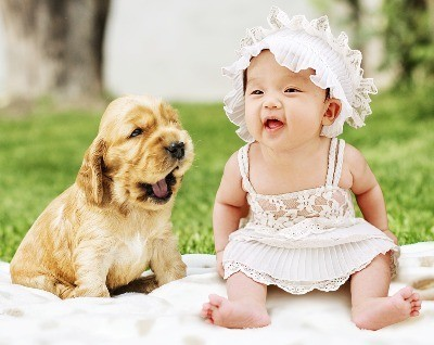 Baby and Puppy Prevent Allergies