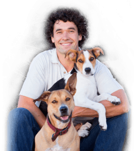 Dan with Dogs